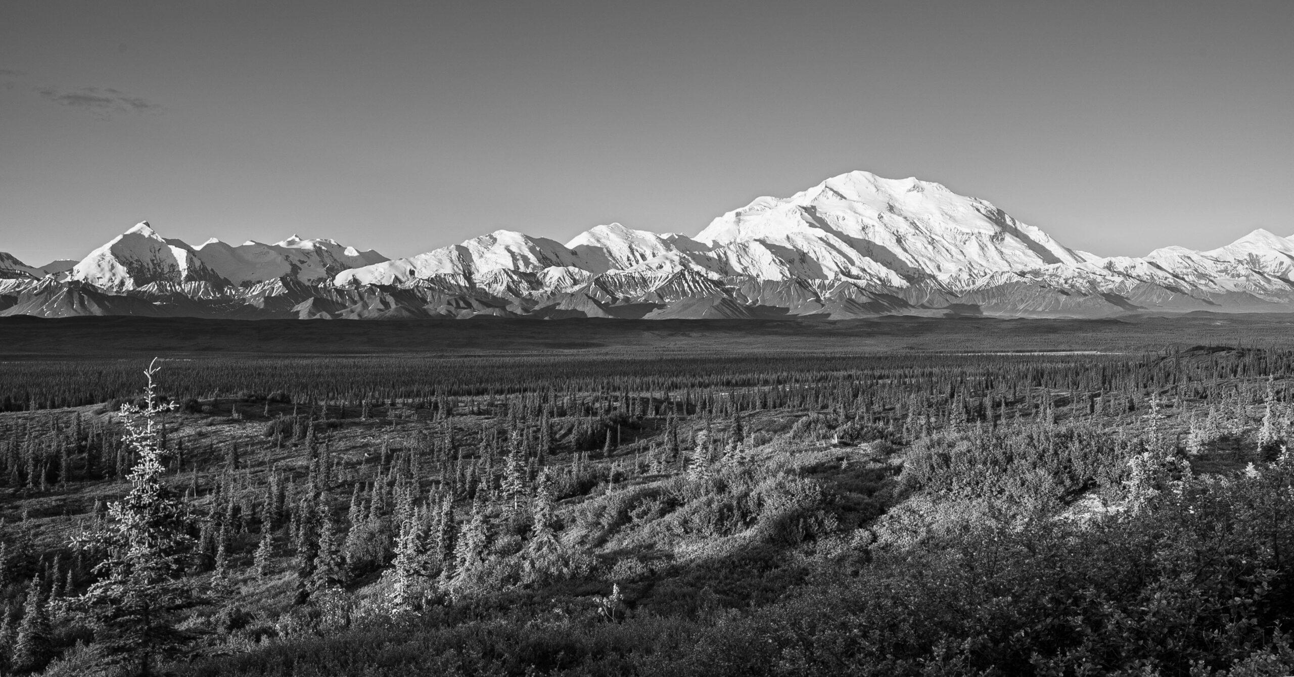 Denali National Park and Homer, Alaska